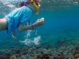 child;children;coast;coastal;coasts;coral;coral-reef;coral-reefs;corals;dive;diver;divers;diving;Fij;Fiji;Fiji-Islands;fishes;girl;girls;island;islands;kid;kids;Malolo-Lailai-Is;Malolo-Lailai-Island;Malololailai-Is;Malololailai-Island;Mamanuca-Group;Mamanuca-Is;Mamanuca-Island-Group;Mamanuca-Islands;Mamanucas;marine;marine-life;marinelife;ocean;oceanlife;Pacific;Pacific-Island;Pacific-Islands;people;person;Plantation-Is;Plantation-Is-Resort;Plantation-Island;Plantation-Island-Resort;reef;reefs;sea;sealife;snorkeller;snorkellers;snorkelling;South-Pacific;tourism;tourist;tourists;tropical-island;tropical-islands;tropical-reef;tropical-reefs;under-water;under_water;undersea;underwater;underwater-photo;underwater-photography;underwater-photos;water;young-girl;young-snorkeller