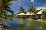 bure;bures;Fij;Fiji;Fiji-Islands;holiday;holiday-accommodation;holiday-resort;holiday-resorts;holidays;island;islands;lagoon-bure;Lagoon-Bures;Malolo-Lailai-Is;Malolo-Lailai-Island;Mamanuca-Group;Mamanuca-Is;Mamanuca-Island-Group;Mamanuca-Islands;Mamanucas;Musket-Cove-Island-Resort;Musket-Cove-Resort;over-water-bure;over-water-bures;over_water-bure;over_water-bures;Pacific;Pacific-Island;Pacific-Islands;palm;palm-frond;palm-fronds;palm-tree;palm-trees;palms;resort;resort-hotel;resort-hotels;resorts;South-Pacific;tropical-island;tropical-islands;vacation;vacations