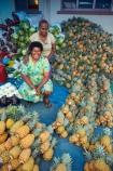 Ananas-comosus;colorful;colourful;commerce;commercial;female;Fij;Fiji-Islands;Fijian;Fijian-lady;food;food-market;food-markets;food-stall;food-stalls;fruit;fruit-and-vegetables;fruit-market;fruit-markets;lady;market;market-place;market_place;marketplace;markets;Pacific;people;person;pineapple;pineapples;produce;produce-market;produce-markets;product;products;retail;retailer;retailers;shop;shopping;shops;South-Pacific;stall;stalls;steet-scene;street-scenes;Suva;Suva-Market;Suva-Municipal-Market;Suva-Produce-Market;Viti-Levu;Viti-Levu-Island;woman