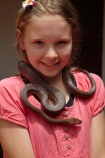 boa;boas;Candoia-bibroni;Candoia-bibroni-bibroni;child;children;Coral-Coast;Fij;Fiji-boa-constrictor;Fiji-boa-constrictors;Fiji-Islands;fijian-boa;fijian-boa-constrictor;fijian-snake;fijian-snakes;girl;girls;kid;kids;Korotogo;Kula-Eco-Park;Kula-Ecopark;Pacific;Pacific-Boa;Pacific-Boa-Constrictor-Snake;reptile;reptiles;Sigatoka;snake;snakes;South-Pacific;tourist-attraction;tourist-attractions;Viti-Levu;Viti-Levu-Island