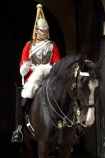6621;armour;armoured;Blues-and-Royals;britain;British-Army.;British-Household-Cavalry;cavalry;cavalry-regiment;ceremonial;Changing-of-the-Guards;Changing-of-the-Horse-Guards;Cuirass;Cuirassier;england;equestrian;equine;Europe;G.B.;GB;great-britain;helmet;helmets;horse;Horse-Guard;Horse-Guards;horse-riding;horses;Household-Cavalry;Household-Cavalry-Mounted-Regiment;kingdom;Life-Guards-Regiment;london;mounted-soldier;mounted-soldiers;Queens-Life-Guard;Queens-Life-Guards;Royal-Horse-Guards-and-1st-Dragoons;The-Household-Cavalry-Mounted-Regiment;tradition;traditional;U.K.;uk;uniform;uniforms;united;United-Kingdom;Whitehall