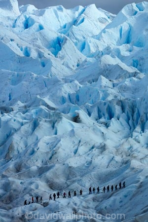 adventure-travel;Argentina;Argentine-Patagonia;Argentine-Republic;blue-ice;cold;crevasse;crevasses;Glaciar-Perito-Moreno;glacier;glacier-hiking;Glacier-National-Park;glacier-trekking;glaciers;Heilo-amp;-Aventura;Hielo-and-Aventura;hiker;hikers;ice;ice-hiking;ice-trekking;icefield;icefields;icy;Latin-America;Los-Glaciares;Los-Glaciares-N.P.;Los-Glaciares-National-Park;Los-Glaciares-NP;national-park;national-parks;NP;park;parks;Parque-Nacional-Los-Glaciares;Patagonia;Patagonian;people;Perito-Moreno;Perito-Moreno-Glacier;person;Santa-Cruz-Province;South-America;South-Argentina;Southern-Argentina;Sth-America;tourism;tourist;tourists;travel;trekker;trekkers;UN-world-heritage-area;UN-world-heritage-site;UNESCO-World-Heritage-area;UNESCO-World-Heritage-Site;united-nations-world-heritage-area;united-nations-world-heritage-site;walker;walkers;world-heritage;world-heritage-area;world-heritage-areas;World-Heritage-Park;World-Heritage-site;World-Heritage-Sites
