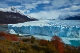 Argentina;Argentine-Patagonia;Argentine-Republic;Argentino-Lake;autuminal;autumn;autumn-colour;autumn-colours;autumnal;beech;beech-tree;beech-trees;beeches;Canal-de-los-Tempanos;cold;color;colors;colour;colours;crevasse;crevasses;deciduous;fall;Glaciar-Perito-Moreno;glacier;glacier-face;Glacier-National-Park;glacier-terminal-face;glacier-terminus;glaciers;gold;golden;ice;Iceberg-Channel;icefield;icefields;icy;Lago-Argentino;Latin-America;leaf;leaves;lenga;lenga-beech;lengas;lookout;lookouts;Los-Glaciares;Los-Glaciares-N.P.;Los-Glaciares-National-Park;Los-Glaciares-NP;Magellanes-Peninsula;national-park;national-parks;Northofagus;Northofagus-pumilio;NP;orange;park;parks;Parque-Nacional-Los-Glaciares;Patagonia;Patagonian;Peninsula-Magellanes;people;Perito-Moreno;Perito-Moreno-Glacier;person;Santa-Cruz-Province;season;seasonal;seasons;South-America;South-Argentina;Southern-Argentina;southern-beech;southern-beeches;Sth-America;terminal-face;terminus;tourism;tourist;tourists;travel;tree;trees;UN-world-heritage-area;UN-world-heritage-site;UNESCO-World-Heritage-area;UNESCO-World-Heritage-Site;united-nations-world-heritage-area;united-nations-world-heritage-site;viewing-platform;viewing-platforms;walkway;walkways;world-heritage;world-heritage-area;world-heritage-areas;World-Heritage-Park;World-Heritage-site;World-Heritage-Sites;yellow