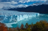 Argentina;Argentine-Patagonia;Argentine-Republic;Argentino-Lake;autuminal;autumn;autumn-colour;autumn-colours;autumnal;beech;beech-tree;beech-trees;beeches;boardwalk;boardwalks;Canal-de-los-Tempanos;cold;color;colors;colour;colours;crevasse;crevasses;deciduous;fall;Glaciar-Perito-Moreno;glacier;glacier-face;Glacier-National-Park;glacier-terminal-face;glacier-terminus;glaciers;gold;golden;ice;Iceberg-Channel;icefield;icefields;icy;Lago-Argentino;Latin-America;leaf;leaves;lenga;lenga-beech;lengas;lookout;lookouts;Los-Glaciares;Los-Glaciares-N.P.;Los-Glaciares-National-Park;Los-Glaciares-NP;Magellanes-Peninsula;national-park;national-parks;Northofagus;Northofagus-pumilio;NP;orange;park;parks;Parque-Nacional-Los-Glaciares;Patagonia;Patagonian;Peninsula-Magellanes;people;Perito-Moreno;Perito-Moreno-Glacier;person;Santa-Cruz-Province;season;seasonal;seasons;South-America;South-Argentina;Southern-Argentina;southern-beech;southern-beeches;Sth-America;terminal-face;terminus;tourism;tourist;tourists;travel;tree;trees;UN-world-heritage-area;UN-world-heritage-site;UNESCO-World-Heritage-area;UNESCO-World-Heritage-Site;united-nations-world-heritage-area;united-nations-world-heritage-site;viewing-platform;viewing-platforms;walkway;walkways;world-heritage;world-heritage-area;world-heritage-areas;World-Heritage-Park;World-Heritage-site;World-Heritage-Sites;yellow