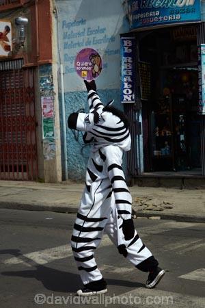 Bolivia;capital;Capital-of-Bolivia;Chuqi-Yapu;crossing-zebra;crossing-zebras;crosswalk;crosswalks;La-Paz;Latin-America;Nuestra-Señora-de-La-Paz;pedestrian-crossing;pedestrian-crossings;safety;South-America;Sth-America;The-Americas;traffic-safety;Traffic-zebra;Traffic-zebras;zebra;zebra-costume;zebra-costumes;Zebra-crossing;zebra-crossings;zebra-urban-educators;zebra-urban-educators-of-La-Paz;zebras