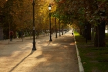 autuminal;autumn;autumn-colour;autumn-colours;autumnal;bike-track;bike-tracks;bike-trail;bike-trails;capital-cities;capital-city;Capital-of-Chile;Chile;color;colors;colour;colours;cycle-track;cycle-tracks;cycle-trail;cycle-trails;cycleway;cycleways;deciduous;excercise;excercising;fall;footpath;footpaths;gold;golden;lamp-post;lamp-posts;lamps;Latin-America;leaf;leaves;park;parks;Parque-Forestal;path;paths;pathway;pathways;people;Santiago;Santiago-de-Chile;season;seasonal;seasons;South-America;Sth-America;The-Americas;tree;trees;yellow