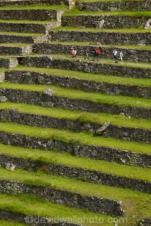 agricultural-terraces;ancient;ancient-culture;archaeology;attraction;building;buildings;Camino-Inca;Camino-Inka;central-terraces;crop-terraces;cultivation-terraces;Cusco-Region;destination;geometric;growing-terraces;heritage;historic;historic-building;historic-buildings;historical;historical-building;historical-buildings;history;horticultural-terraces;Inca;Inca-Citadel;Inca-City;Inca-Ruins;Inca-Trail;Inka;Latin-America;lost-city;Lower-agricultural-sector;Machu-Picchu;Machu-Pichu;Machupicchu-District;old;pattern;patterns;people;person;Peru;Republic-of-Peru;retaining-wall;retaining-walls;ruin;ruins;Sacred-Valley;Sacred-Valley-of-the-Incas;South-America;stepped;Sth-America;terrace;terraced;terraces;terracing;tourism;tourist;tourist-attraction;tourist-site;tourist-sites;tourists;tradition;traditional;UN-world-heritage-area;UN-world-heritage-site;UNESCO-World-Heritage-area;UNESCO-World-Heritage-Site;united-nations-world-heritage-area;united-nations-world-heritage-site;Urubamba-Province;Urubamba-Valley;visitors;world-heritage;world-heritage-area;world-heritage-areas;World-Heritage-Park;World-Heritage-site;World-Heritage-Sites