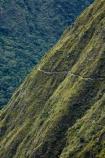 Camino-Inca;Camino-Inka;Classic-Inca-Trail;Cusco-Region;hiking-track;hiking-tracks;hiking-trail;hiking-trails;Inca-Path;Inca-Trail;Inca-trek;Latin-America;Machupicchu-District;Peru;Republic-of-Peru;Sacred-Valley;Sacred-Valley-of-the-Incas;South-America;steep;steep-hillside;steep-hillsides;Sth-America;trekking;Urubamba-Province;waking-track;waking-tracks;walking-trail;walking-trails