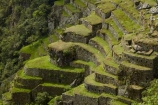 agricultural-terraces;ancient;ancient-culture;archaeology;attraction;building;buildings;Camino-Inca;Camino-Inka;crop-terraces;cultivation-terraces;Cusco-Region;destination;growing-terraces;heritage;historic;historic-building;historic-buildings;historical;historical-building;historical-buildings;history;horticultural-terraces;Inca;Inca-Citadel;Inca-City;Inca-Ruins;Inca-Trail;Inka;Latin-America;lost-city;Machu-Picchu;Machu-Pichu;Machupicchu-District;old;Peru;Republic-of-Peru;retaining-wall;retaining-walls;ruin;ruins;Sacred-Valley;Sacred-Valley-of-the-Incas;South-America;Sth-America;terrace;terraced;terraces;terracing;tourist-attraction;tourist-site;tourist-sites;tradition;traditional;UN-world-heritage-area;UN-world-heritage-site;UNESCO-World-Heritage-area;UNESCO-World-Heritage-Site;united-nations-world-heritage-area;united-nations-world-heritage-site;Urubamba-Province;Urubamba-Valley;world-heritage;world-heritage-area;world-heritage-areas;World-Heritage-Park;World-Heritage-site;World-Heritage-Sites