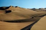 areneros;arid;buggies;buggy;desert;deserts;dune;dune-buggies;dune-buggy;dunes;Huacachina;Huacachina-Desert;Ica;Ica-Desert;Ica-Region;Latin-America;Peru;Peruvian-Desert;recreation;recreational-vehicle;recreational-vehicles;Republic-of-Peru;ripple;rippled;ripples;sand;sand-dune;sand-dunes;sand-hill;sand-hills;sand-ripple;sand-ripples;sand_dune;sand_dunes;sand_hill;sand_hills;sanddune;sanddunes;sandhill;sandhills;sandy;South-America;Sth-America;tourism;travel