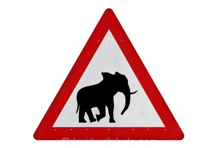 Africa;C35;Desert-Elephant;Desert-elephant-warning-sign;Desert-elephant-warning-signs;elephant-warning-sign;elephant-warning-signs;Namibia;road-sign;road-signs;road-warning-sign;road-warning-signs;sign;signs;warning-sign;warning-signs;wildlife-sign;wildlife-signs;cutout
