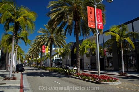 Palm Trees On Rodeo Drive Luxury Shopping Street In
