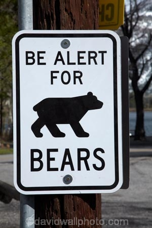 America;American;bear;Bear-sign;Bear-signs;Bear-warning-sign;bears;CA;California;danger;Eastern-Sierra;Mono-County;Sierra-Nevada;Sierra-Nevada-Mountain-Range;Sierra-Nevadas;Silver-Lake;Silver-Lake-Resort;States;U.S.A;United-States;United-States-of-America;USA;warning-sign;warning-signs;West-Coast;West-United-States;West-US;West-USA;Western-United-States;Western-US;Western-USA;wildlife