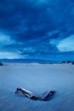 4168;america;american;approaching-storm;approaching-storms;black-cloud;black-clouds;CA;california;cloud;clouds;cloudy;dark-cloud;dark-clouds;dead-tree;dead-trees;death;Death-Valley;Death-Valley-N.P.;Death-Valley-National-Park;desert;dune;dunes;gray-cloud;gray-clouds;Great-Basin;grey-cloud;grey-clouds;International-Biosphere-Reserve;Inyo-County;log;logs;Mesquite-Flat;Mesquite-Flat-Dunes;Mesquite-Flat-Sand-Dunes;mojave;Mojave-Desert;national;national-park;National-parks;park;rain-cloud;rain-clouds;rain-storm;rain-storms;sand;sand-dune;Sand-Dunes;sand-hill;sand-hills;sand_dune;sand_dunes;sand_hill;sand_hills;sanddune;sanddunes;sandhill;sandhills;sandy;states;storm;storm-cloud;storm-clouds;storms;stovepipe;Stovepipe-Wells;The-Great-Basin;thunder-storm;thunder-storms;thunderstorm;thunderstorms;U.S.A;United-States;United-States-of-America;usa;valley;weather;wells;west-coast;West-United-States;West-US;West-USA;Western-United-States;Western-US;Western-USA