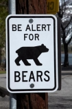 America;American;bear;Bear-sign;Bear-signs;Bear-warning-sign;bears;CA;California;danger;Eastern-Sierra;Mono-County;Sierra-Nevada;Sierra-Nevada-Mountain-Range;Sierra-Nevadas;Silver-Lake;Silver-Lake-Resort;States;U.S.A;United-States;United-States-of-America;USA;warning-sign;warning-signs;West-Coast;West-United-States;West-US;West-USA;Western-United-States;Western-US;Western-USA;wildlife