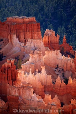 America;American-Southwest;badland;badlands;Bryce-Amphitheater;Bryce-Amphitheatre;Bryce-Canyon;Bryce-Canyon-N.P.;Bryce-Canyon-National-Park;Bryce-Canyon-NP;clay;column;columns;earth-pyramid;earth-pyramids;eroded;erosion;fairy-chimney;fairy-chimneys;formation;formations;geological;geology;hoodoo;hoodoos;Inspiration-Point;layer;layers;lookout;lookouts;national-park;national-parks;natural-geological-formation;natural-geological-formations;natural-tower;natural-towers;North-America;overlook;Paunsaugunt-Plateau;pillar;pillars;pinnacle;pinnacles;rock;rock-chimney;rock-chimneys;rock-column;rock-columns;rock-formation;rock-formations;rock-pillar;rock-pillars;rock-pinnacle;rock-pinnacles;rock-spire;rock-spires;rock-tower;rock-towers;rocks;Sandstone;South-west-United-States;South-west-US;South-west-USA;South-western-United-States;South-western-US;South-western-USA;Southwest-United-States;Southwest-US;Southwest-USA;Southwestern-United-States;Southwestern-US;Southwestern-USA;States;stone;tent-rock;tent-rocks;the-Southwest;U.S.A;United-States;United-States-of-America;unusual-natural-feature;unusual-natural-features;unusual-natural-formation;unusual-natural-formations;USA;UT;Utah;view;viewpoint;viewpoints;views;weathered;weathering;wilderness;wilderness-area;wilderness-areas