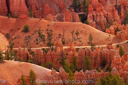 America;American-Southwest;badland;badlands;Bryce-Amphitheater;Bryce-Amphitheatre;Bryce-Canyon;Bryce-Canyon-N.P.;Bryce-Canyon-National-Park;Bryce-Canyon-NP;clay;column;columns;earth-pyramid;earth-pyramids;eroded;erosion;fairy-chimney;fairy-chimneys;formation;formations;geological;geology;hiker;hikers;hiking-path;hiking-paths;hiking-track;hiking-tracks;hiking-trail;hiking-trails;hoodoo;hoodoos;layer;layers;lookout;lookouts;national-park;national-parks;natural-geological-formation;natural-geological-formations;natural-tower;natural-towers;North-America;overlook;path;paths;pathway;pathways;Paunsaugunt-Plateau;people;person;pillar;pillars;pinnacle;pinnacles;Queens-Garden-Path;Queens-Garden-Trackl;Queens-Garden-Trail;Queens-Garden-walk;Queens-Garden-Path;Queens-Garden-Track;Queens-Garden-Trail;Queens-Garden-walk;rock;rock-chimney;rock-chimneys;rock-column;rock-columns;rock-formation;rock-formations;rock-pillar;rock-pillars;rock-pinnacle;rock-pinnacles;rock-spire;rock-spires;rock-tower;rock-towers;rocks;route;routes;Sandstone;South-west-United-States;South-west-US;South-west-USA;South-western-United-States;South-western-US;South-western-USA;Southwest-United-States;Southwest-US;Southwest-USA;Southwestern-United-States;Southwestern-US;Southwestern-USA;States;stone;tent-rock;tent-rocks;the-Southwest;tourism;tourist;tourists;track;tracks;trail;trails;tramping-track;tramping-tracks;tramping-trail;tramping-trails;U.S.A;United-States;United-States-of-America;unusual-natural-feature;unusual-natural-features;unusual-natural-formation;unusual-natural-formations;USA;UT;Utah;view;viewpoint;viewpoints;views;walker;walkers;walking-path;walking-paths;walking-track;walking-tracks;walking-trail;walking-trails;walkway;walkways;weathered;weathering;wilderness;wilderness-area;wilderness-areas