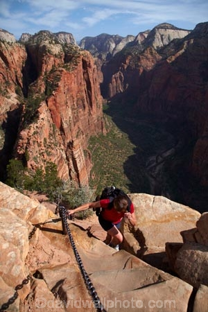 adventure;adventurous;America;American-Southwest;Angels-Landing;Angels-Landing-track;Angels-Landing-trail;Angel's-Landing;Angel's-Landing-track;Angel's-Landing-trail;bluff;bluffs;chain;chain-hand-rail;chain-rail;chains;cliff;cliffs;danger;dangerous;dangerous-hike;dangerous-track;female;females;hand-rail;hand-rails;hiker;hikers;hiking-path;hiking-paths;hiking-track;hiking-tracks;hiking-trail;hiking-trails;lookout;lookouts;national-parks;overlook;path;paths;pathway;pathways;people;person;route;routes;South-west-United-States;South-west-US;South-west-USA;South-western-United-States;South-western-US;South-western-USA;Southwest-United-States;Southwest-US;Southwest-USA;Southwestern-United-States;Southwestern-US;Southwestern-USA;States;the-Southwest;tourism;tourist;tourists;track;tracks;trail;trails;tramping-track;tramping-tracks;tramping-trail;tramping-trails;U.S.A;United-States;United-States-of-America;USA;UT;Utah;view;viewpoint;viewpoints;views;walker;walkers;walking-path;walking-paths;walking-track;walking-tracks;walking-trail;walking-trails;walkway;walkways;woman;women;Zion;Zion-Canyon;Zion-N.P.;Zion-National-Park;Zion-NP