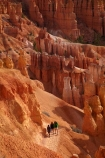 America;American-Southwest;badland;badlands;Bryce-Amphitheater;Bryce-Amphitheatre;Bryce-Canyon;Bryce-Canyon-N.P.;Bryce-Canyon-National-Park;Bryce-Canyon-NP;clay;column;columns;earth-pyramid;earth-pyramids;eroded;erosion;fairy-chimney;fairy-chimneys;formation;formations;geological;geology;hiker;hikers;hiking-path;hiking-paths;hiking-track;hiking-tracks;hiking-trail;hiking-trails;hoodoo;hoodoos;layer;layers;lookout;lookouts;national-park;national-parks;natural-geological-formation;natural-geological-formations;natural-tower;natural-towers;Navajo-Loop;Navajo-Loop-path;Navajo-Loop-track;Navajo-Loop-trail;Navajo-Loop-walk;Navajo-path;Navajo-track;Navajo-trail;Navajo-walk;North-America;overlook;path;paths;pathway;pathways;Paunsaugunt-Plateau;people;person;pillar;pillars;pinnacle;pinnacles;rock;rock-chimney;rock-chimneys;rock-column;rock-columns;rock-formation;rock-formations;rock-pillar;rock-pillars;rock-pinnacle;rock-pinnacles;rock-spire;rock-spires;rock-tower;rock-towers;rocks;route;routes;Sandstone;South-west-United-States;South-west-US;South-west-USA;South-western-United-States;South-western-US;South-western-USA;Southwest-United-States;Southwest-US;Southwest-USA;Southwestern-United-States;Southwestern-US;Southwestern-USA;States;stone;tent-rock;tent-rocks;the-Southwest;tourism;tourist;tourists;track;tracks;trail;trails;tramping-track;tramping-tracks;tramping-trail;tramping-trails;U.S.A;United-States;United-States-of-America;unusual-natural-feature;unusual-natural-features;unusual-natural-formation;unusual-natural-formations;USA;UT;Utah;view;viewpoint;viewpoints;views;walker;walkers;walking-path;walking-paths;walking-track;walking-tracks;walking-trail;walking-trails;walkway;walkways;weathered;weathering;wilderness;wilderness-area;wilderness-areas