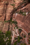 America;American-Southwest;Angels-Landing;Angels-Landing-track;Angels-Landing-trail;Angel's-Landing;Angel's-Landing-track;Angel's-Landing-trail;bluff;bluffs;cliff;cliffs;hairpin-bend;hairpin-bends;hairpin-corner;hairpin-corners;hiking-path;hiking-paths;hiking-track;hiking-tracks;hiking-trail;hiking-trails;national-park;national-parks;path;paths;pathway;pathways;route;routes;South-west-United-States;South-west-US;South-west-USA;South-western-United-States;South-western-US;South-western-USA;Southwest-United-States;Southwest-US;Southwest-USA;Southwestern-United-States;Southwestern-US;Southwestern-USA;States;steep;switchback;switchback-track;switchback-tracks;switchbacks;the-Southwest;track;tracks;trail;trails;tramping-track;tramping-tracks;tramping-trail;tramping-trails;U.S.A;United-States;United-States-of-America;USA;UT;Utah;walker;walkers;walking-path;walking-paths;walking-track;walking-tracks;walking-trail;walking-trails;walkway;walkways;West-Rim-Track;West-Rim-Trail;zig-zag;zig-zag-trail;zig-zag-trails;zig-zags;zig_zag-path;zig_zag-paths;zig_zags;zigzag-track;zigzag-tracks;zigzags;Zion;Zion-Canyon;Zion-N.P.;Zion-National-Park;Zion-NP