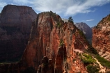 adventure;adventurous;America;American-Southwest;Angels-Landing;Angels-Landing-track;Angels-Landing-trail;Angel's-Landing;Angel's-Landing-track;Angel's-Landing-trail;bluff;bluffs;cliff;cliffs;danger;dangerous;dangerous-hike;dangerous-track;Great-White-Throne;hiker;hikers;hiking-path;hiking-paths;hiking-track;hiking-tracks;hiking-trail;hiking-trails;lookout;lookouts;national-parks;overlook;path;paths;pathway;pathways;people;person;route;routes;Scout-Lookout;Scouts-Lookout;South-west-United-States;South-west-US;South-west-USA;South-western-United-States;South-western-US;South-western-USA;Southwest-United-States;Southwest-US;Southwest-USA;Southwestern-United-States;Southwestern-US;Southwestern-USA;States;the-Southwest;tourism;tourist;tourists;track;tracks;trail;trails;tramping-track;tramping-tracks;tramping-trail;tramping-trails;U.S.A;United-States;United-States-of-America;USA;UT;Utah;view;viewpoint;viewpoints;views;walker;walkers;walking-path;walking-paths;walking-track;walking-tracks;walking-trail;walking-trails;walkway;walkways;Zion;Zion-Canyon;Zion-N.P.;Zion-National-Park;Zion-NP