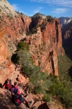 adventure;adventurous;America;American-Southwest;Angels-Landing;Angels-Landing-track;Angels-Landing-trail;Angel's-Landing;Angel's-Landing-track;Angel's-Landing-trail;bluff;bluffs;boy;boys;chain;chain-hand-rail;chain-rail;chains;child;children;cliff;cliffs;danger;dangerous;dangerous-hike;dangerous-track;families;family;female;females;girl;girls;hand-rail;hand-rails;hiker;hikers;hiking-path;hiking-paths;hiking-track;hiking-tracks;hiking-trail;hiking-trails;kid;kids;lookout;lookouts;national-parks;overlook;path;paths;pathway;pathways;people;person;route;routes;South-west-United-States;South-west-US;South-west-USA;South-western-United-States;South-western-US;South-western-USA;Southwest-United-States;Southwest-US;Southwest-USA;Southwestern-United-States;Southwestern-US;Southwestern-USA;States;teenager;teenagers;the-Southwest;tourism;tourist;tourists;track;tracks;trail;trails;tramping-track;tramping-tracks;tramping-trail;tramping-trails;U.S.A;United-States;United-States-of-America;USA;UT;Utah;view;viewpoint;viewpoints;views;walker;walkers;walking-path;walking-paths;walking-track;walking-tracks;walking-trail;walking-trails;walkway;walkways;woman;women;Zion;Zion-Canyon;Zion-N.P.;Zion-National-Park;Zion-NP