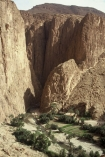 canyon;canyons;gorges;gorge;palmerie;palmeries;sahara;spectacular;cliff;cliffs;bluff;bluffs;river;rivers;todra;morocco;moroccan;africa-;african