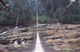 cameroon;camerouns;cameroons;cameroun;bridge;bridges;swing-bridge;rope-bridge;wire-bridge;planks-;cross;river;rivers;long;suspension-bridge;jungle-;rainforest;rain-forest;korup-national-park