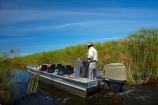 Africa;aluminium-boat;aluminium-boats;aquatic-plant;aquatic-plants;boat;boats;Botswana;Cyperaceae;Cyperus-papyrus;delta;deltas;Endorheic-basin;inland-delta;internal-drainage-systems;Okavango;Okavango-Delta;Okavango-Swamp;paper-reed;paper-reeds;papyrus-reed;papyrus-reeds;papyrus-sedge;plant;plants;reed;reeds;river-delta;Seven-Natural-Wonders-of-Africa;Southern-Africa;tourist-boat;tourist-boats;water-plant;waterplants