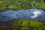 aerial;aerial-image;aerial-images;aerial-photo;aerial-photograph;aerial-photographs;aerial-photography;aerial-photos;aerial-view;aerial-views;aerials;Africa;Botswana;delta;deltas;Endorheic-basin;flood-plain;flood-plains;flood_plain;flood_plains;floodplain;floodplains;inland-delta;internal-drainage-systems;Okavango;Okavango-Delta;Okavango-Swamp;plain;plains;pond;ponds;river-delta;Seven-Natural-Wonders-of-Africa;Southern-Africa;swamp;swampland;swamps;water