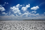 Africa;alkalii-flat;Baines-Baobabs;Baines-Baobabs;Baines-Baobabs;barren;barreness;basin;Botswana;clay-pan;clay-pans;cloud;clouds;depression;desert;deserts;desolate;dry;dry-lake;dry-lake-bed;dry-lake-beds;dry-lakes;empty;endorheric;endorheric-basin;endorheric-basins;endorheric-lake;extreme;flat;geographic;geography;glare;glary;Kudiakam-Pan;lake;lake-bed;lake-beds;lakes;Makgadikgadi-Pan;Makgadikgadi-Pans;national-park;national-parks;Nxai-Pan-N.P.;Nxai-Pan-National-Park;Nxai-Pan-NP;pan;pans;playa;playas;remote;remoteness;rock-salt;sabkha;saline;salt;salt-crust;salt-lake;salt-lakes;salt-pan;salt-pans;salt-rock;salt-rocks;salt_pan;salt_pans;saltpan;saltpans;salty;skies;sky;Southern-Africa;vast;vlei;white;white-surface;wilderness