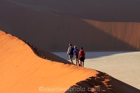 adventure;adventurous;Africa;arid;big-dunes;children;clay-pan;clay-pans;Dead-Vlei;Deadvlei;desert;deserts;dry;dune;dunes;families;family;family-holiday;family-holidays;giant-dune;giant-dunes;giant-sand-dune;giant-sand-dunes;holiday;holidays;hot;huge-dunes;large-dunes;Namib-Desert;Namib-Naukluft-N.P.;Namib-Naukluft-National-Park;Namib-Naukluft-NP;Namib_Naukluft-N.P.;Namib_Naukluft-National-Park;Namib_Naukluft-NP;Namibia;national-park;national-parks;natural;orange-sand;pan;people;person;remote;remoteness;reserve;reserves;salt-pan;salt-pans;sand;sand-dune;sand-dunes;sand-hill;sand-hills;sand_dune;sand_dunes;sand_hill;sand_hills;sanddune;sanddunes;sandhill;sandhills;sandy;Sossusvlei;Southern-Africa;tourism;tourist;tourists;vlei;white-clay-pan;wilderness