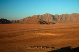 accommodation;Africa;African;Desert-Camp;holiday;holiday-resort;holiday-resorts;holidays;hotel;hotels;koppie;koppies;Mount-Naukluftberge;mountain;mountains;Mt-Naukluftberge;Namib-Desert;Namibia;range;resort;resort-hotel;resort-hotels;resorts;Sesriem;Southern-Africa;vacation;vacations;View