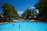 Africa;Etosha-N.P.;Etosha-National-Park;Etosha-NP;game-park;game-parks;game-reserve;game-reserves;Namibia;national-park;national-parks;Okaukuejo;Okaukuejo-Camp;Okaukuejo-Rest-Camp;people;person;pool;pools;Southern-Africa;swim;swimmer;swimmers;swimming-pool;swimming-pools;wildlife-park;wildlife-parks;wildlife-reserve;wildlife-reserves