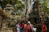 1186AD;12th-century;abandon;abandoned;ancient-temple;ancient-temples;Angkor;Angkor-Archaeological-Park;Angkor-Region;Angkor-Wat-World-Heritage-Area;Angkor-Wat-World-Heritage-Park;Angkor-Wat-World-Heritage-Site;Angkor-World-Heritage-Area;Angkor-World-Heritage-Park;Angkor-World-Heritage-Site;archaeological-site;archaeological-sites;Asia;bas-relief;bas-relief-carving;bas-relief-carvings;bas_relief;bas_relief-carving;bas_relief-carvings;Buddhist-temple;Buddhist-temples;building;buildings;Cambodia;Cambodian;Ceiba-pentandra;heritage;historic;historic-place;historic-places;historical;historical-place;historical-places;history;Indochina-Peninsula;jungle;Kampuchea;Khmer-Capital;Khmer-Empire;Khmer-temple;Khmer-temples;Kingdom-of-Cambodia;old;overgrown;people;person;place-of-worship;places-of-worship;religion;religions;religious;religious-monument;religious-monuments;religious-site;root;roots;ruin;ruins;Siem-Reap;Siem-Reap-Province;silk_cotton-tree;Southeast-Asia;stone;stone-building;stone-carving;stone-carvings;stonework;Ta-Prohm;Ta-Prohm-temple;Ta-Prohm-temple-ruins;temple-ruins;Tetrameles-nudiflora;thitpok;tourism;tourist;tourists;tradition;traditional;tree;tree-root;tree-roots;trees;twelfth-century;UN-world-heritage-area;UN-world-heritage-site;UNESCO-World-Heritage-area;UNESCO-World-Heritage-Site;united-nations-world-heritage-area;united-nations-world-heritage-site;world-heritage;world-heritage-area;world-heritage-areas;World-Heritage-Park;World-Heritage-site;World-Heritage-Sites