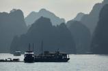 Asia;boat;boats;cruise-boat;cruise-boats;cruising;Ha-Long-Bay;Halong-Bay;karst-landscape;limestone-karsts;monochromatic;monochrome;North-Vietnam;Northern-Vietnam;Qung-Ninh-Province;Quang-Ninh-Province;South-East-Asia;Southeast-Asia;tour-boat;tour-boats;tourism;tourist;tourist-boat;tourist-boats;tourists;travel-destination;UN-world-heritage-area;UN-world-heritage-site;UNESCO-World-Heritage-area;UNESCO-World-Heritage-Site;united-nations-world-heritage-area;united-nations-world-heritage-site;Vnh-H-Long;Vietnam;Vietnamese;world-heritage;world-heritage-area;world-heritage-areas;World-Heritage-Park;World-Heritage-site;World-Heritage-Sites