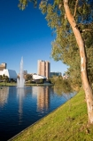 accommodation;accommodations;Adelaide;Adelaide-Festival-Centre;architecture;Australasian;Australia;Australian;building;buildings;calm;eucalypt;eucalypts;eucalyptus;eucalytis;Festival-Centre;fountain;fountains;gum;gum-tree;gum-trees;gums;hotel;hotels;Hyatt-Hotel;Hyatt-Regency-Hotel;lake;Lake-Torrens;lakes;placid;quiet;reflection;reflections;river;River-Torrens;rivers;S.A.;SA;serene;smooth;South-Australia;State-Capital;still;Torrens-Lake;Torrens-River;tranquil;tree;trees;water;water-fountain;water-fountains