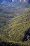 Australasia;Australia;Australian;Blackheath;Blue-Mountains;Blue-Mountains-N.P.;Blue-Mountains-National-Park;Blue-Mountains-NP;bluff;bluffs;cliff;cliffs;eucalypt;eucalypts;eucalyptus;eucalytis;Evans-Lookout;Grose-Valley;gum;gum-tree;gum-trees;gums;lookout;lookouts;mountainside;mountainsides;N.S.W.;New-South-Wales;NSW;panorama;panoramas;scene;scenes;scenic-view;scenic-views;steep;tree;trees;UN-world-heritage-site;UNESCO-World-Heritage-Site;united-nations-world-heritage-site;View;viewpoint;viewpoints;views;vista;vistas;world-heritage;world-heritage-area;world-heritage-areas;World-Heritage-Park;World-Heritage-site;World-Heritage-Sites