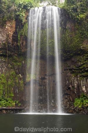 Atherton-Tableland;Atherton-Tablelands;Australasian;Australia;Australian;cascade;cascades;creek;creeks;falls;Millaa-Millaa-Falls;Millaa-Millaa-Waterfall;Millaa-Millaa-Waterfalls;natural;nature;North-Queensland;Qld;Queensland;scene;scenic;stream;streams;tropical-rainforest;tropical-rainforests;water;water-fall;water-falls;waterfall;waterfalls;wet