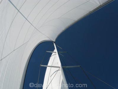 Australasian;Australia;Australian;blue;boat;boats;cruise;cruises;launch;launches;main-sail;mast;masts;North-Queensland;Qld;Queensland;sail;Sails;sky;spinnaker;tour-boat;Tour-Boats;tourism;tourist;tourist-boat;tourist-boats;Tropcial-North-Queensland;water;Wavedancer;white;yacht;yachts