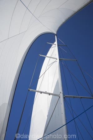 Australasian;Australia;Australian;blue;boat;boats;cruise;cruises;launch;launches;main-sail;mast;masts;North-Queensland;Port-Douglas;Qld;Queensland;sail;Sails;sky;spinnaker;tour-boat;Tour-Boats;tourism;tourist;tourist-boat;tourist-boats;Tropcial-North-Queensland;water;Wavedancer;white;yacht;yachts