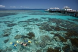 australasian;Australia;australian;Barrier-Reef;Big-Cat-Catermaran;bikini;bikinis;boy;boys;cairns;cay;cays;child;children;coast;coastal;coastline;coastlines;coasts;coral-cay;coral-cays;coral-reef;coral-reefs;Coral-Sea;dive-site;dive-sites;diver;divers;Ecosystem;Environment;families;family;girl;girls;Great-Barrier-Reef;Great-Barrier-Reef-Marine-Park;Green-Is;Green-Is-NP;Green-Is.;green-island;Green-Island-N.P.;Green-Island-National-Park;Green-Island-NP;Green-Island-Resort;holiday;holiday-destination;holiday-destinations;holidaying;Holidays;marine-environment;mothe;North-Queensland;ocean;oceans;people;person;Persons;Qld;queensland;rash-suit;rash-suits;rashsuit;rashsuits;reef;reefs;sand-cay;sand-cays;sea;seas;shore;shoreline;shorelines;Shores;snorkel;snorkeler;snorkelers;snorkeling;south-pacific;stinger-suit;stinger-suits;swim;swimmer;swimmers;swimming;tasman-sea;tourism;tourist;tourists;travel;traveler;traveling;traveller;travelling;Tropcial-North-Queensland;tropical;tropical-reef;tropical-reefs;UNESCO-World-Heritage-Site;Vacation;Vacationers;vacationing;Vacations;water;Wiorld-Heritage-Site;woman;women;world-heritage-area;World-Heritage-Park;world-heritage-site