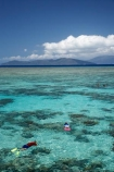 australasian;Australia;australian;Barrier-Reef;cairns;cay;cays;coast;coastal;coastline;coastlines;coasts;coral-cay;coral-cays;coral-reef;coral-reefs;Coral-Sea;dive-site;dive-sites;diver;divers;Ecosystem;Environment;Great-Barrier-Reef;Great-Barrier-Reef-Marine-Park;Green-Is;Green-Is-NP;Green-Is.;green-island;Green-Island-N.P.;Green-Island-National-Park;Green-Island-NP;Green-Island-Resort;holiday;holiday-destination;holiday-destinations;holidaying;Holidays;marine-environment;North-Queensland;ocean;oceans;people;person;persons;Qld;queensland;reef;reefs;sand-cay;sand-cays;sea;seas;shore;shoreline;shorelines;Shores;snorkel;snorkeler;snorkelers;snorkeling;south-pacific;swim;swimmer;swimmers;swimming;tasman-sea;tourism;tourist;tourists;travel;traveler;traveling;traveller;travelling;Tropcial-North-Queensland;tropical;tropical-reef;tropical-reefs;UNESCO-World-Heritage-Site;vacation;vacationers;vacationing;vacations;water;Wiorld-Heritage-Site;world-heritage-area;World-Heritage-Park;world-heritage-site