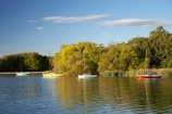 A.C.T.;ACT;Australia;Australian-Capital-Territory;autuminal;autumn;autumn-colour;autumn-colours;autumnal;boat;boats;calm;Canberra;capital;capitals;color;colors;colour;colours;deciduous;fall;lake;Lake-BG;Lake-Burley-Griffin;lakes;leaf;leaves;Lotus-Bay;placid;quiet;reflection;reflections;season;seasonal;seasons;serene;smooth;still;tranquil;tree;trees;water;West-Lake;yacht;yachts