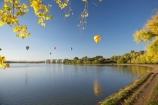 A.C.T.;ACT;adventure;air;Australia;Australian-Capital-Territory;autuminal;autumn;autumn-colour;autumn-colours;autumnal;aviation;balloon;ballooning;balloons;Barton;Bowen-Park;calm;Canberra;capital;capitals;color;colorful;colors;colour;colourful;colours;deciduous;East-Basin;fall;flight;float;floating;fly;flying;hot-air-balloon;hot-air-ballooning;hot-air-balloons;hot_air-balloon;hot_air-ballooning;hot_air-balloons;hotair-balloon;hotair-balloons;lake;Lake-BG;Lake-Burley-Griffin;lakes;leaf;leaves;mid-air;mid_air;park;parks;placid;quiet;reflection;reflections;season;seasonal;seasons;serene;smooth;sport;sports;still;tourism;tranquil;transport;transportation;tree;trees;water