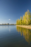 A.C.T.;ACT;Australia;Australian-Capital-Territory;autuminal;autumn;autumn-colour;autumn-colours;autumnal;calm;Canberra;capital;capitals;color;colors;colour;colours;cycle-path;cycle-paths;cycle-way;cycle-ways;cycle_way;cycle_ways;cycleway;cycleways;deciduous;fall;lake;Lake-BG;Lake-Burley-Griffin;lakes;leaf;leaves;Lennox-Gardens;park;parks;placid;poplar;poplar-tree;poplar-trees;poplars;quiet;reflection;reflections;season;seasonal;seasons;serene;smooth;still;tranquil;tree;trees;water;West-Lake