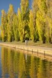 A.C.T.;ACT;Australia;Australian-Capital-Territory;autuminal;autumn;autumn-colour;autumn-colours;autumnal;bicycle;bicycles;bike;bikes;calm;Canberra;capital;capitals;color;colors;colour;colours;cycle;cycle-path;cycle-paths;cycle-way;cycle-ways;cycle_way;cycle_ways;cycles;cycleway;cycleways;cyclist;cyclists;deciduous;fall;lake;Lake-BG;Lake-Burley-Griffin;lakes;leaf;leaves;Lennox-Gardens;park;parks;placid;poplar;poplar-tree;poplar-trees;poplars;push-bike;push-bikes;push_bike;push_bikes;pushbike;pushbikes;quiet;reflection;reflections;season;seasonal;seasons;serene;smooth;still;tranquil;tree;trees;water;West-Lake