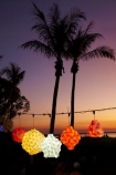 Australasian;Australia;Australian;commerce;commercial;Darwin;dusk;evening;food-market;food-markets;food-stall;food-stalls;fruit-market;lamp;lamps;lantern;lanterns;market;market-place;market_place;marketplace;markets;Mindil-Beach;Mindil-Beach-Market;Mindil-Beach-Markets;Mindil-Beach-Sunset-Market;Mindil-Beach-Sunset-Markets;Mindil-Market;Mindil-Markets;Mindil-Sunset-Market;Mindil-Sunset-Markets;N.T.;nightfall;Northern-Territory;NT;orange;palm-tree;palm-trees;silhouette;silhouettes;sky;sunset;sunsets;Top-End;twilight