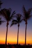 Australasian;Australia;Australian;Darwin;dusk;evening;Mindil-Beach;Mindil-Beach-Market;Mindil-Beach-Markets;Mindil-Beach-Sunset-Market;Mindil-Beach-Sunset-Markets;Mindil-Market;Mindil-Markets;Mindil-Sunset-Market;Mindil-Sunset-Markets;N.T.;nightfall;Northern-Territory;NT;orange;palm-tree;palm-trees;silhouette;silhouettes;sky;sunset;sunsets;Top-End;twilight