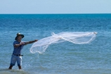 Australasian;Australia;Australian;Darwin;East-Point;East-Point-Recreation-Reserve;fisher;fisherman;fishing;N.T.;net-fishing;Northern-Territory;NT;people;person;Top-End